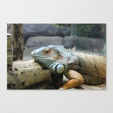 Tired Fire Breathing Dragon Canvas Print