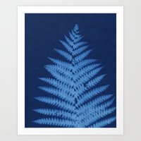 fern Art Prints featuring Fern by Jill Byers