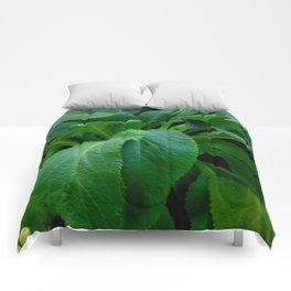 GREEN COMFREY LEAVES Comforters