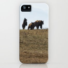 Standing Cinnamon Black Cub with mother and sibling at Pryor Mountain iPhone Case