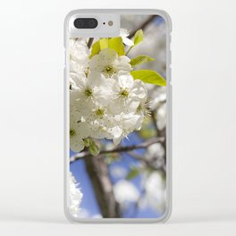 blossoming cherry Clear iPhone Case