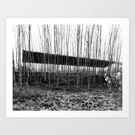 Forest Illusion Art Print