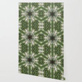 Kuil Cahaya Wallpaper