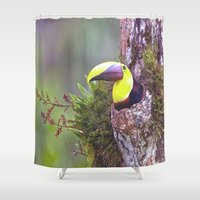 toucan Shower Curtains featuring Toucan by WorldPear