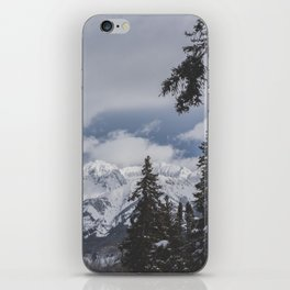 Winter Mountainscape iPhone Skin