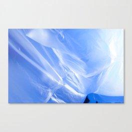 V. 30: Home Canvas Print