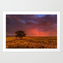 Fire Within - Red Sky and Rainbow Over Lone Tree on Great Plains Art Print