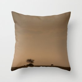 Lone wildebeest grazing in South Africa at sunset Throw Pillow