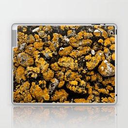 Gold Stone Mold Laptop & iPad Skin