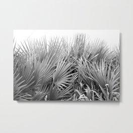 Palm Pool Metal Print