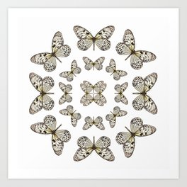Rice Paper Butterfly Circle Art Print