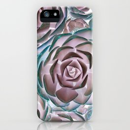 Succulent Succulents iPhone Case