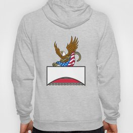 American Eagle Clutching Towing J Hook Flag Retro Hoody