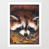 raccoon Art Prints featuring Raccoon by Patrizia Ambrosini