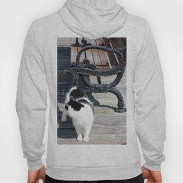 Boardwalk Kitty Hoody