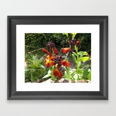 Wild Fire Framed Art Print