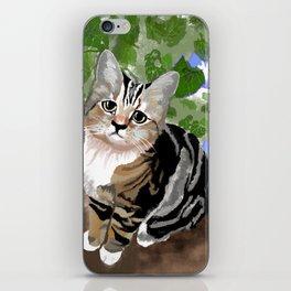 Stewie - The First Kitten iPhone Skin