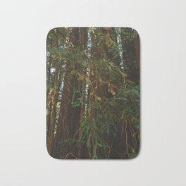 Redwood Forest V Bath Mat