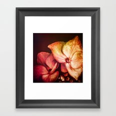 Dream Flower 6 Framed Art Print