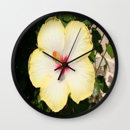 Pale Yellow Hibiscus Flower - Front View  Wall Clock