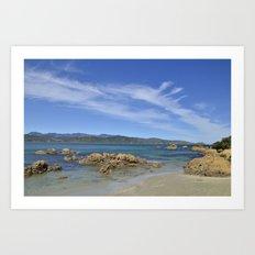 Wellington Beach Art Print