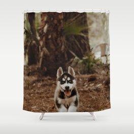 Dog by Cody Board Shower Curtain
