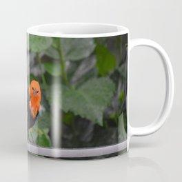 National Aviary - Pittsburgh - Scarlet Headed Blackbird Coffee Mug