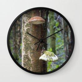 Oyster Fungi Wall Clock