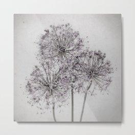 Allum i - Pale Vintage Botanicals Metal Print