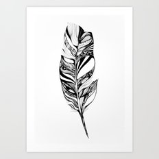 Feather - Lucidity Art Print