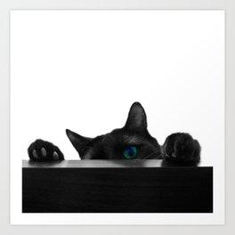 Black Cat Attack Art Print