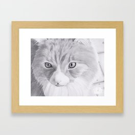 Purfect Framed Art Print