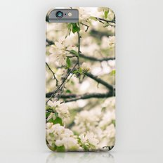 In the Spring Slim Case iPhone 6s