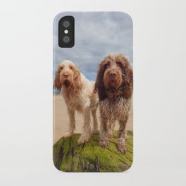 Italian Spinoni - Dogs on a Rock iPhone Case