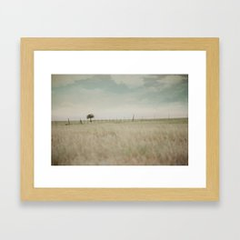 Meadow Dream Framed Art Print