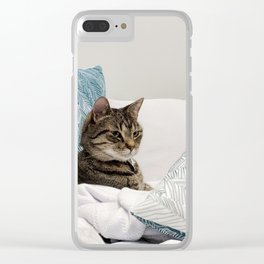Tabby among pillows Clear iPhone Case