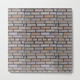 Protective brick wall Metal Print