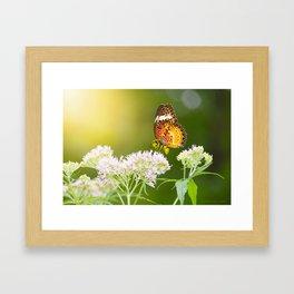 butterwasp Framed Art Print