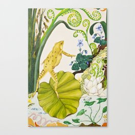 Frog on Water Lilly Canvas Print