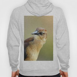 Female Great-tailed Grackle Hoody