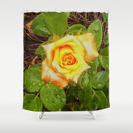 Floral Print 040 Shower Curtain