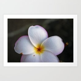 The beauty of the islands of Hawaii Art Print