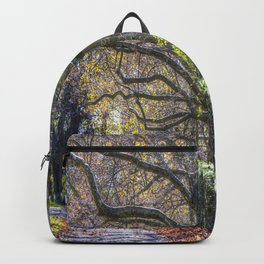 Sleepy Hollow In Autumn Backpack
