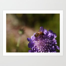 FlowerBee Art Print