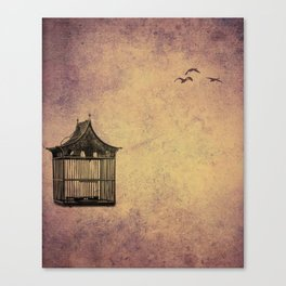 birds and freedom concept Canvas Print