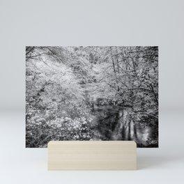 North Fork Silver Creek bw Mini Art Print