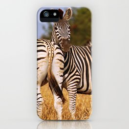 Zebras wildlife in Africa iPhone Case