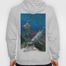 Dolphins Hoody