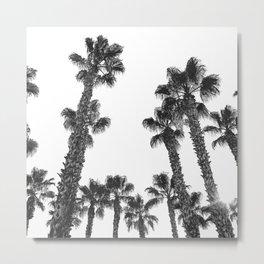 16 Palm Trees Art Print {2 of 2} Metal Print