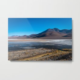 Flamingos on Laguna Colorada Surrounded by Volcanoes Metal Print